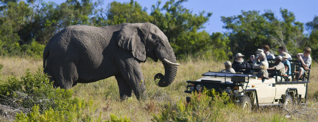 South Africa: Fly Round-Trip to Johannesburg